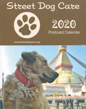 Street Dog Care Wall Hanging Postcard Calendar 2020 (0.010)