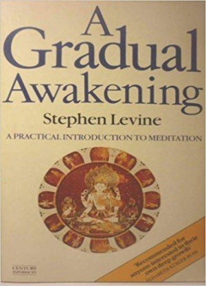 A Gradual Awakening: A Practical Introduction To Meditation