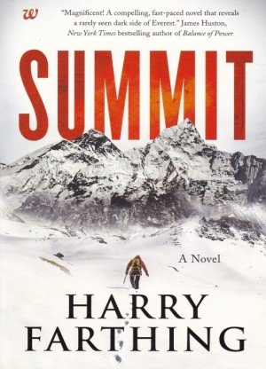 Summit A Novel