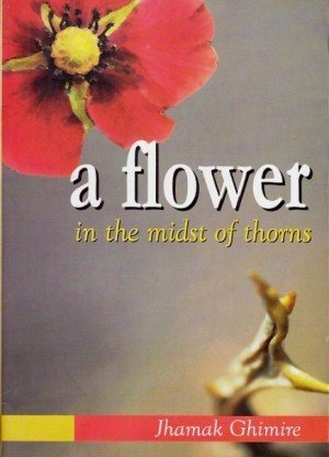 A Flower in the midst of Throns