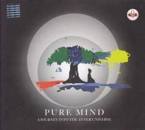 Pure Mind: A Journey Into the Inner Universe