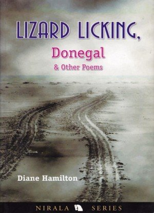Lizard Licking, Donegal & Other Poems