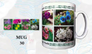 "Souvenir Mug - ""Flowers of Nepal 1"""