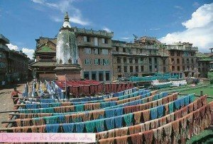 Drying wool in the Kathmandu Valley N3065