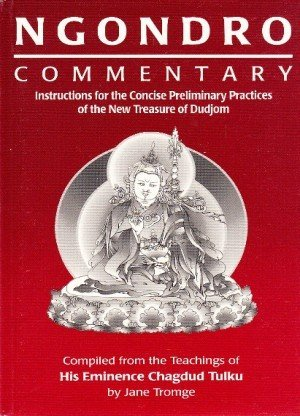 Ngondro Commentary: Instructions for the Concise Preliminary Practices of the New Treaures of Dudjom