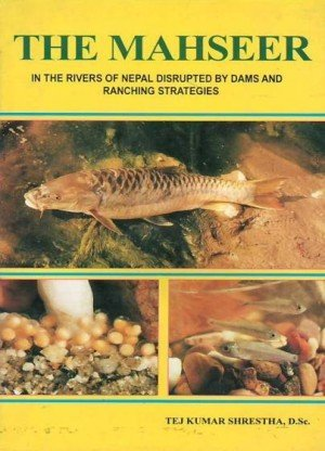 The Mahseer: In the Rivers of Nepal Disrupted by Dams and Ranching Strategies