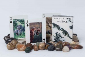 "Playing Cards: ""Wildlife of Nepal"""